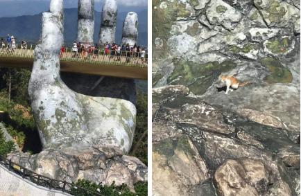 """Dân mạng cười bò với hình ảnh chú mèo ngồi chễm chệ ở Cầu Vàng: Trẫm là """"hoàng thượng"""", cần gì phải mua vé!"""