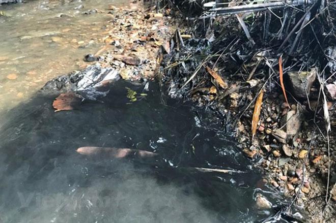 Nước sông Đà nhiễm độc Styren ảnh hưởng như thế nào đến sức khỏe?