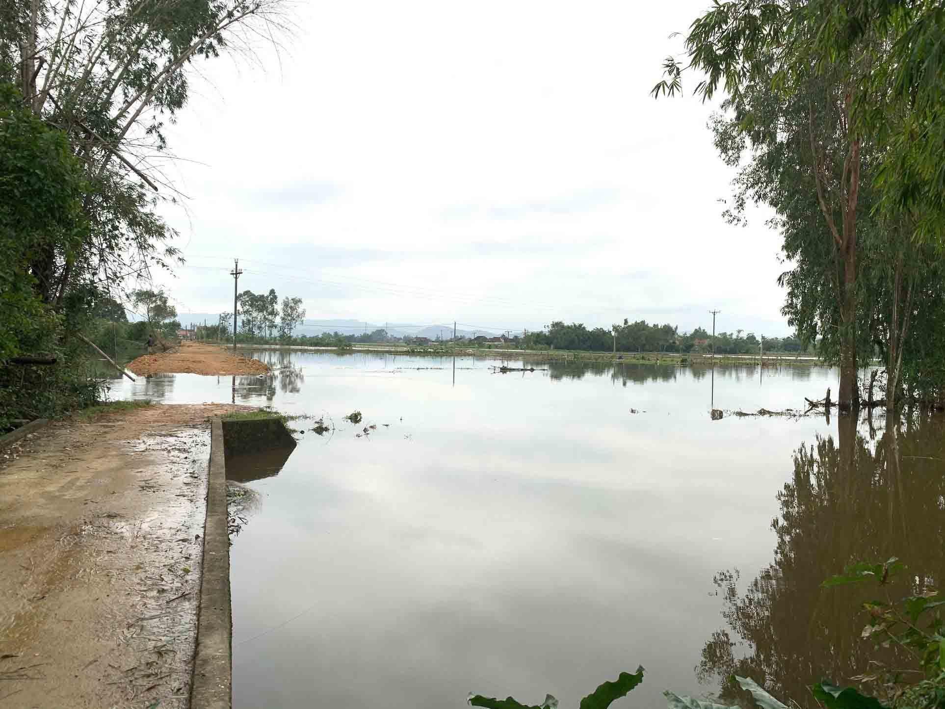 Nam sinh lớp 9 dũng cảm lao xuống sông cứu sống 2 học sinh bị nước cuốn