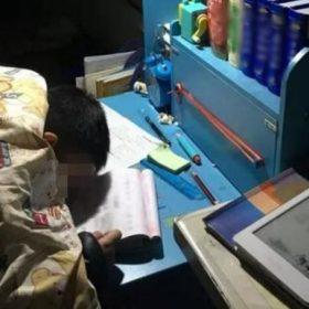 Con trai học từ sáng tới 23h chưa được nghỉ, cậu bé mệt mỏi xin mẹ ngủ 5 phút và mãi mãi không tỉnh dậy