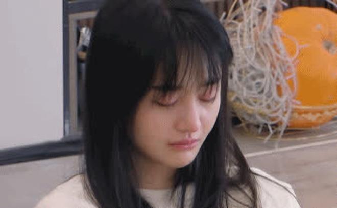 Trịnh Sảng gọi điện cho Trương Hằng, gặp 2 con liền bật khóc nức nở nói lời xin lỗi