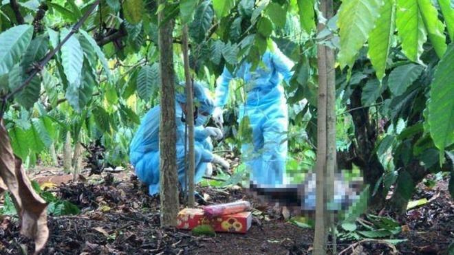Đắk Lắk: Tá hỏa phát hiện thi thể nam giới không nguyên vẹn trong rẫy cà phê
